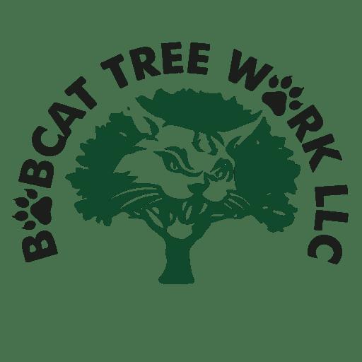 Bob Cat Tree Work