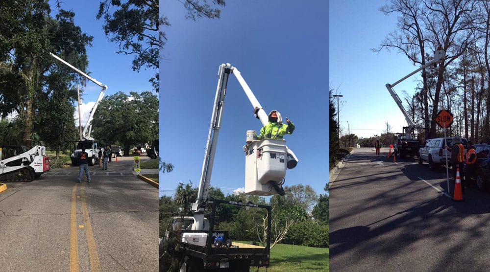 Bobcat Tree Work, LLC trucks in action. We have all the equipment to not only do the job of removing a tree but make it safe for everyone involved.