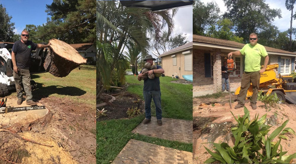 We are a fair and honest employer and we take care of our workers. They enjoy working for us and we consider them family. These are three pictures of our guys with their equipment. First, leaning on a large stump, second, one of our guys with a handful of coconuts from a tree and third leaning on a chainsaw standing on its tip.